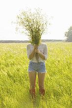 stehend ,Frau ,Bündel ,halten ,frontal ,Feld ,Wildblume