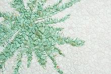 Pflanzenblatt,Pflanzenblätter,Blatt,Spiegelung,Teich