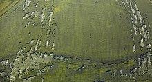 Vom Wind gezeichnetes Weizenfeld, Luftbild