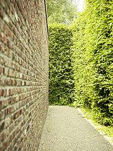 Wand ,Ziegelstein ,Hecke