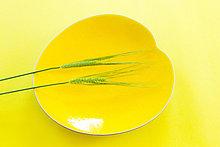 Essgeschirr ,gelb ,blau ,Weizen
