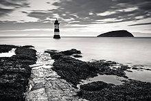 Morgendämmerung,Leuchtturm,Insel,zeigen,Papageitaucher,Fratercula arctica,Wales