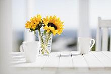 Tasse,Blume,Küche,Blumenvase,Kaffee,Tisch