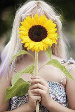 Außenaufnahme ,Sonnenblume, helianthus annuus ,halten ,frontal ,Mädchen ,freie Natur