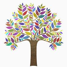 Farbaufnahme,Farbe,Baum,weiß,Hintergrund,Vielfalt