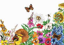 Schmetterlinge und Bienen auf leuchtend bunten Gartenblumen