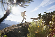 Sonnenaufgang,Hund,wandern