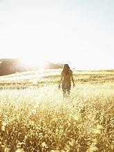 Gegenlicht,Frau,Schönheit,gehen,Natur,Feld,Reise,Wiese,Sonne