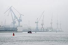 Nebel,Dock,Wetter