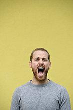Portrait,Mann,gelb,Hintergrund,frontal,schreien,jung