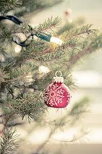Beleuchtung,Licht,Weihnachtsbaum,Tannenbaum,Dekoration,Faden,rot,Saite