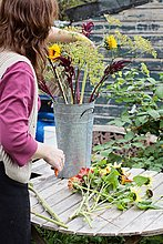 Cropped view of mature woman arranging fresh flowers at allotment