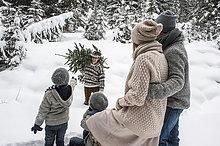 Zusammenhalt,Winter,Mann,Wald,Weihnachtsbaum,Tannenbaum