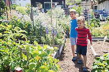 Boy holding hands with brother in allotment