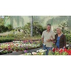 Mature couple walking through garden centre