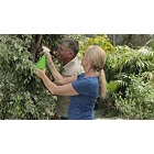 Mature couple gardening, spraying leaves of tree with water