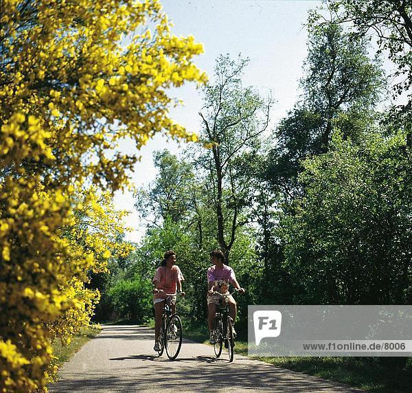 Mann und Frau durch den Park Radfahren