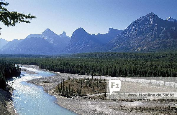 River flowing through landscape  Icefields Parkway  Alberta  Canada