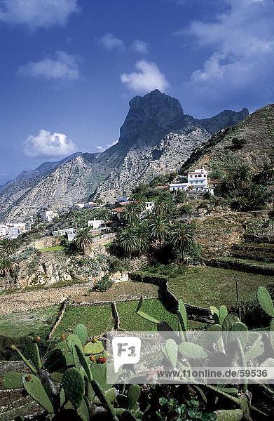 hoch oben nahe Gebäude Hügel Pflanze Hintergrund Kanaren Kanarische Inseln Kaktus La Gomera Spanien