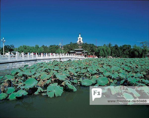 China  Peking  Winterpalais