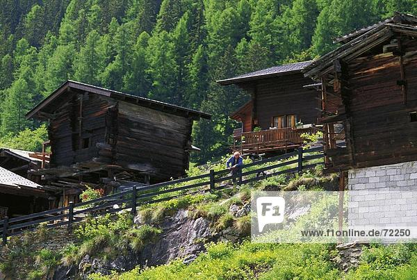 10254092  Blatten  chalet  Lotschental  Switzerland  Europe  wood  forest  Valais