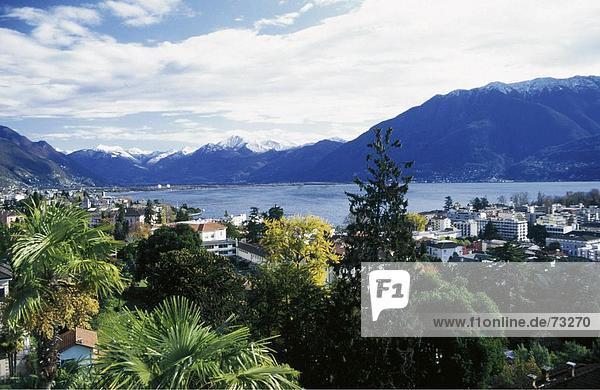 Europa Berg Wohnhaus Baum Gebäude See Meer Lago Maggiore Luzern Schnee Schweiz