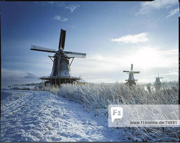 10631808 river fluss freilichtmuseum holland landschaften nebel