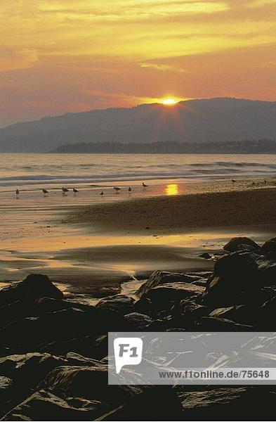 10641088  Abend Licht  Abendstimmung  Alaska  Stein  Klippe  Gegenlicht  high  cheers  Hochformat  Homer  Landschaft  Meer  si