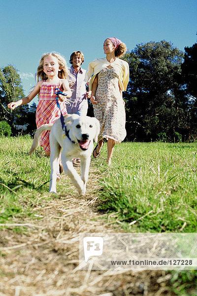 Mädchen Spaziergang Hund auf dem Land