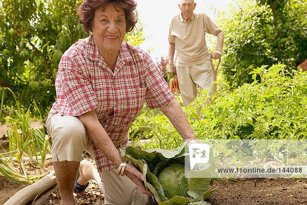Seniorenpaar im Kleingarten