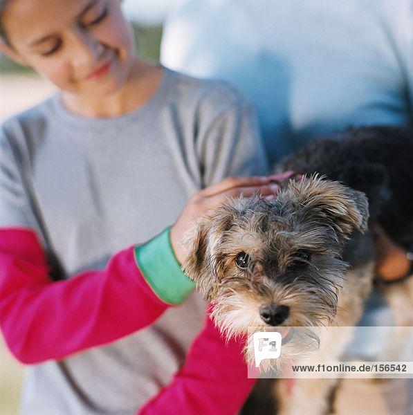 Mädchen streichelt einen Terrier