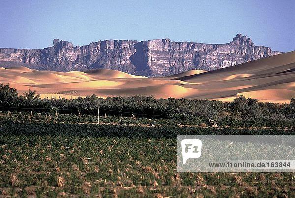 Felsformationen mit Sanddünen in Wüste Sahara-Wüste  Fessan  Libyen