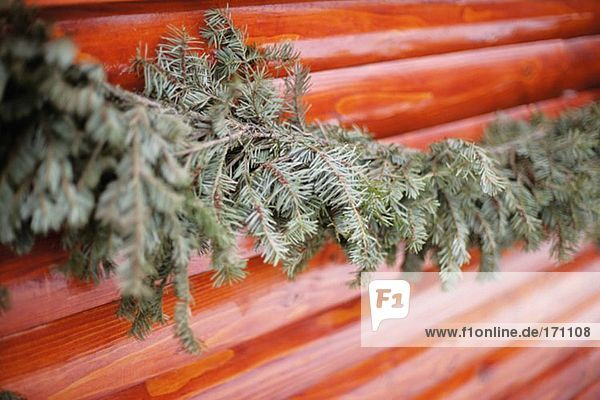 Tannenzweig entlang einer Holzwand