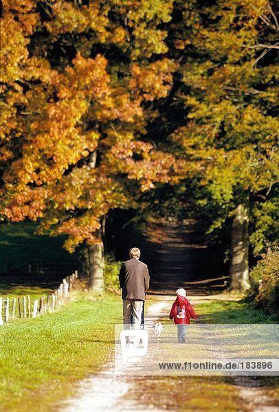 Rückansicht des Mannes zu Fuß mit seinem Enkel im park