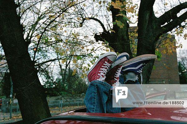 Trainer durch Autoschiebedach