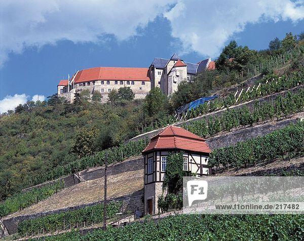 Low angle view of castle  Neuenburg Castle  Freyburg  Saxony-Anhalt  Germany