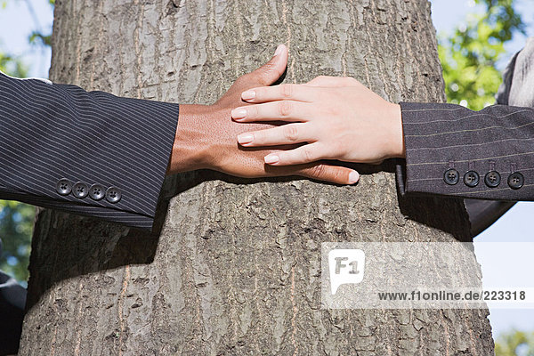 Geschäftsleute umarmen einen Baum
