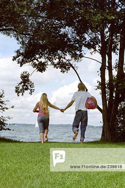 Rückansicht des jungen Paares gehen hand in hand