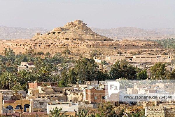 Gebäuden und Bäumen in der Stadt  zur Oase Siwa  Libysche Wüste Ägypten