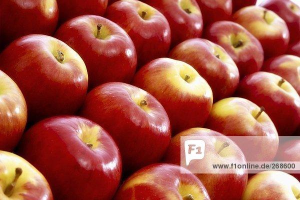 Viele rote Äpfel  bildfüllend