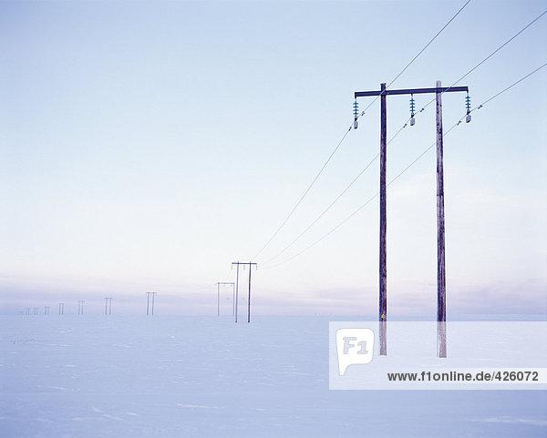 Stromleitungen in Winterlandschaft.
