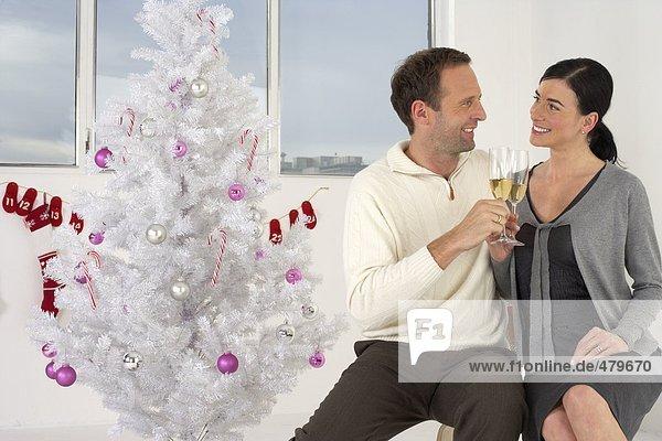 Paar stößt mit Sekt vor Weihnachtsbaum an  fully_released