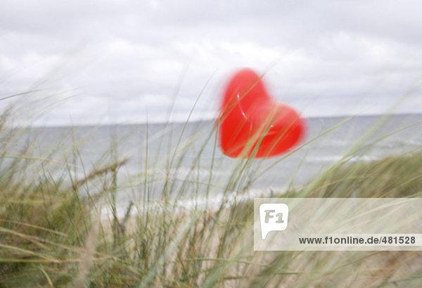 rote Ballon in Form von Herzen fliegen auf Windiger Strand im Herbst rote Ballon in Form von Herzen fliegen auf Windiger Strand im Herbst