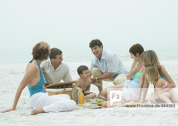 Group having picnic on the beach