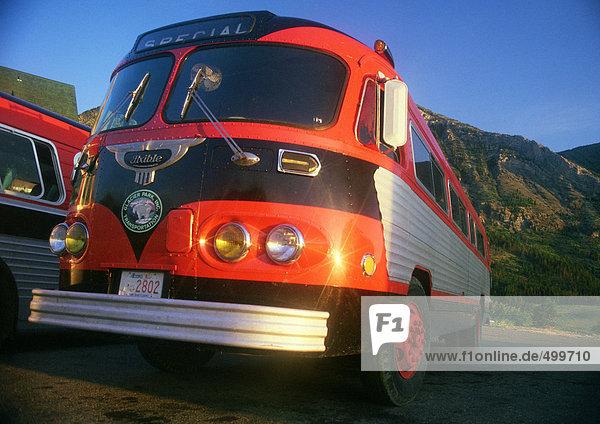Reisebusse  Glacier National Park  Montana  Vereinigte Staaten von Amerika