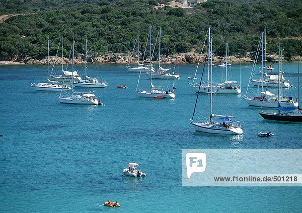 Korsika  Boote im Hafen
