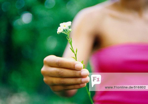 Frau hält Blume  Teilansicht