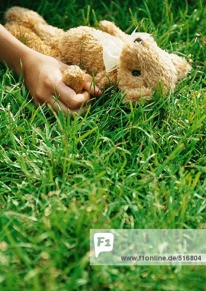 Hand hält Teddybär im Gras