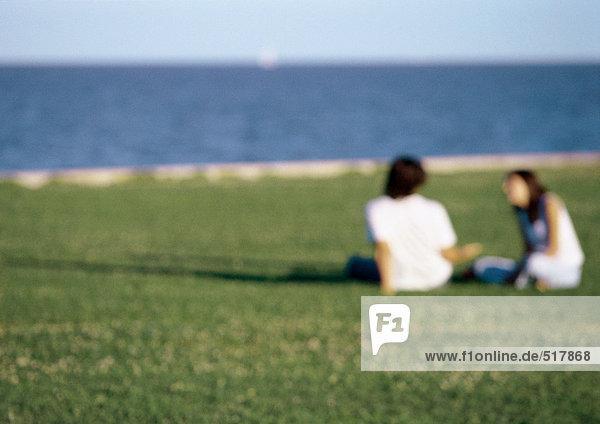 Junges Paar  zusammen im Gras am Meer sitzend  verschwommen