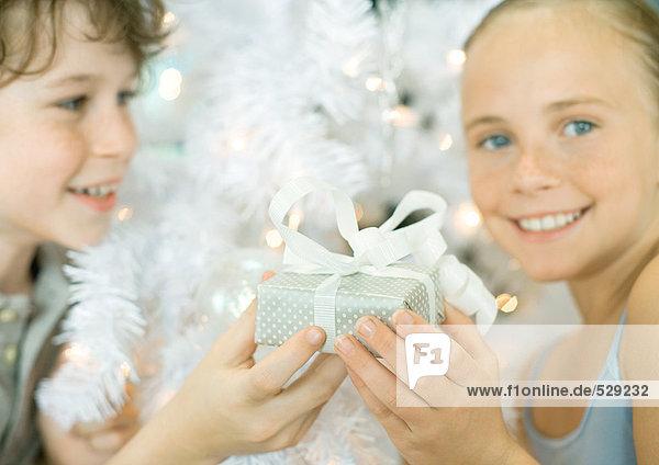 Junge überreicht Schwestergeschenk vor dem Weihnachtsbaum